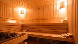 sauna stone