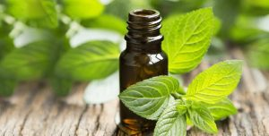 how to use different types of essential oils for sauna aromatheray